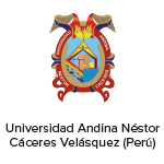 29-universidad-andina-nestor-caceres